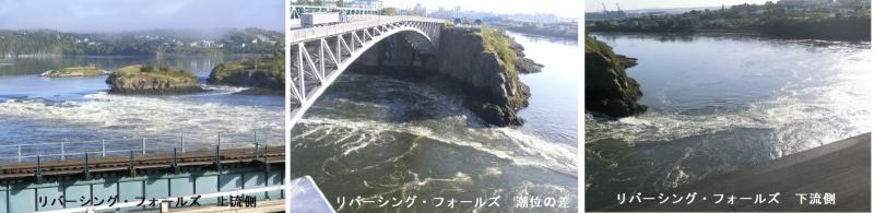 Photo_20200115062001