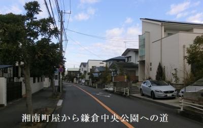 Photo_20200507060801
