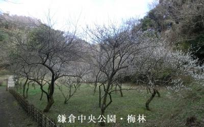 Photo_20200507060901