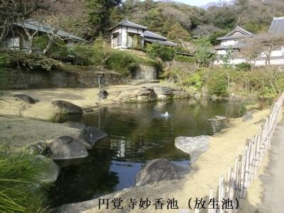 Photo_20200525070001