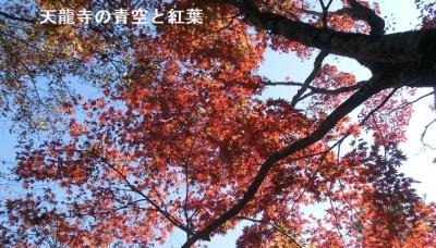 Photo_20201205060601