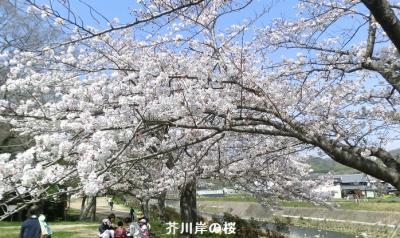 Photo_20210327055701